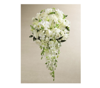 White Wonders in Kingman AZ, Heaven's Scent Florist