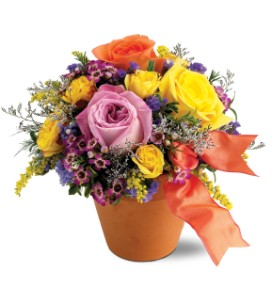 Teleflora's Sweet 'n Simple in Modesto, Riverbank & Salida CA, Rose Garden Florist