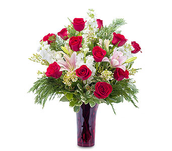 Winter Passion in Helena MT, Knox Flowers & Gifts, LLC