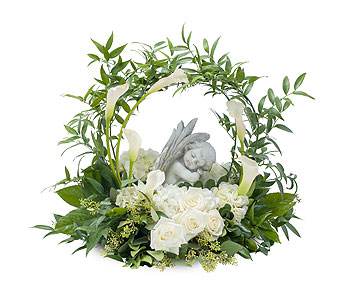Dreaming with Angels in Fort Worth TX, TCU Florist