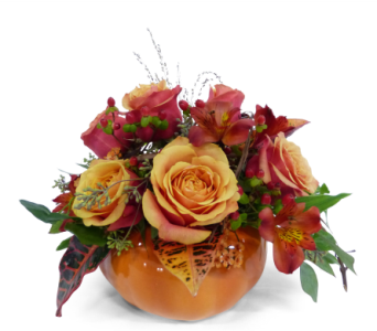 Birthday flowers by bell flowers silver spring pumpkin delight in silver spring md bell flowers inc mightylinksfo