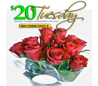 $20 Tuesday- Roses in Indianapolis IN, George Thomas Florist