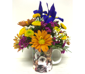 Kitten Coffee Mug Arrangement- Designed All-Around in Wyoming MI, Wyoming Stuyvesant Floral