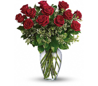 Romantic Radiant Roses for Three Months in Fairfax VA, Exotica Florist, Inc.