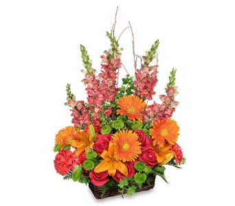 Brilliant Basket in Sayville NY, Sayville Flowers Inc