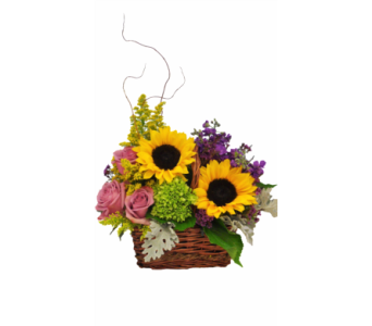 Sunflower Basket in Stuart FL, Harbour Bay Florist