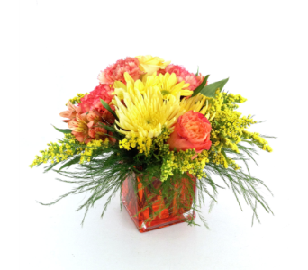 Pot Of Gold in Nashville TN, Emma's Flowers & Gifts, Inc.