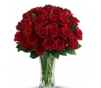 TWO DOZEN in Needham MA, Needham Florist