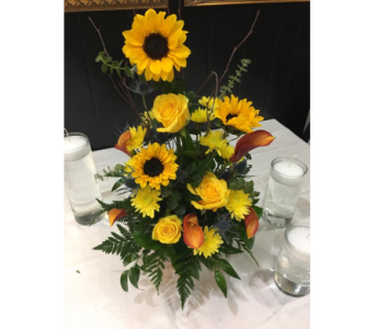 Sunflower Sunshine in Naples FL, Naples Floral Design