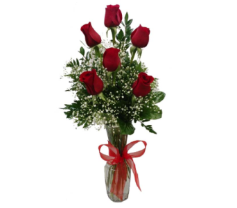 Sweetest Day Rose Special in Big Rapids, Cadillac, Reed City and Canadian Lakes MI, Patterson's Flowers, Inc.