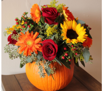 COLORFUL PUMPKIN in Needham MA, Needham Florist