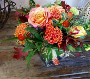 Brilliant Shades in Orinda CA, Misaghi Design Orinda Florist