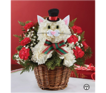 Christmas Caroling Cat in Fairfax VA, Exotica Florist, Inc.