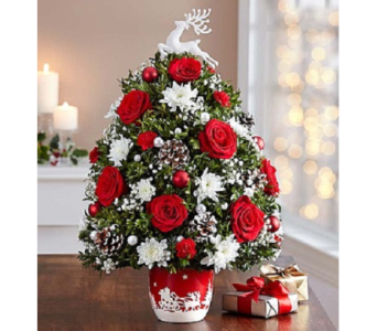 Santa's Sleigh Ride Tree in Fairfax VA, Exotica Florist, Inc.