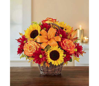 Fall Fields of Europe Basket in Fairfax VA, Exotica Florist, Inc.