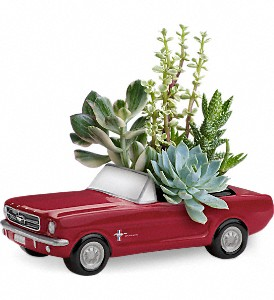 Dream Wheels '65 Ford Mustang by Teleflora in Idabel OK, Sandy's Flowers & Gifts