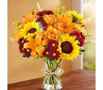 FALL MIX in Needham MA, Needham Florist