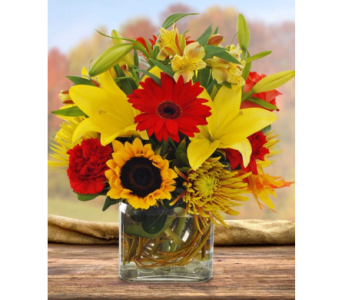 BRIGHT AUTUMN in Needham MA, Needham Florist