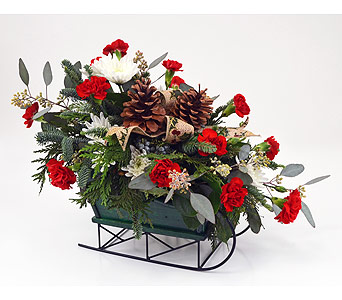 Sleigh Ride in Indianapolis IN, Gillespie Florists