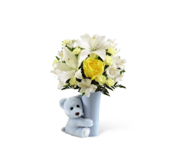 Baby Boy Hug� in Norfolk VA, The Sunflower Florist