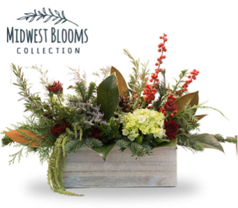 Winter Box of Blooms   Berries in Oshkosh WI, House of Flowers