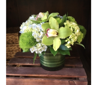Emerald Elegance in Bayside NY, Bell Bay Florist
