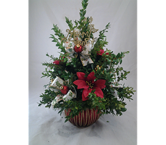 Heaven scent flowers bonita springs gallery flower decoration ideas heaven scent flowers bonita springs image collections flower boxwood tree in bonita springs fl heaven scent mightylinksfo