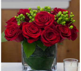 BERRY RED in Needham MA, Needham Florist