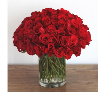 100 Roses in Needham MA, Needham Florist