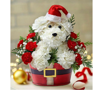 Santa Paws in Fort Myers FL, Ft. Myers Express Floral & Gifts