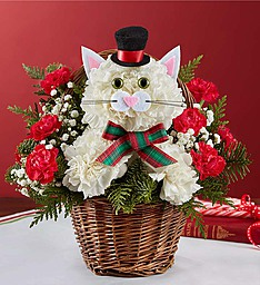 Christmas Caroling Cat in Round Rock TX, Heart & Home Flowers