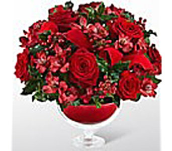 Holiday Peace Bouquet in Lewisville TX, D.J. Flowers & Gifts