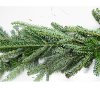 Fresh Noble Fir Garland in Little Rock AR, Tipton & Hurst, Inc.