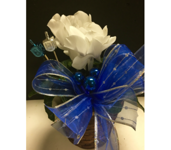 Spin The Dreidel in Needham MA, Needham Florist