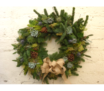 SoCal Holiday Wreath in West Los Angeles CA, Westwood Flower Garden