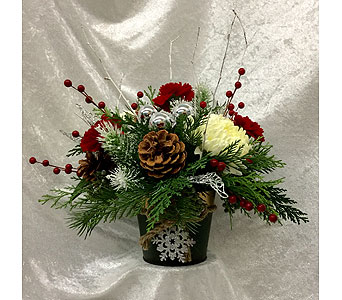 Holiday Pot in Broomall PA, Leary's Florist