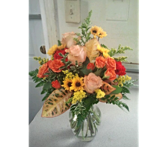 Sweet and Lovely in New Port Richey FL, Ibritz Flower Decoratif