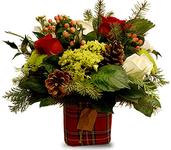 Christmas Plaid in Fort Worth TX, TCU Florist
