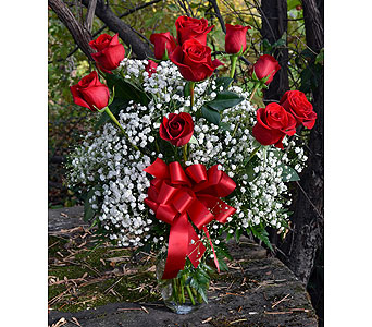 Captivate My Love in Indianapolis IN, Gillespie Florists