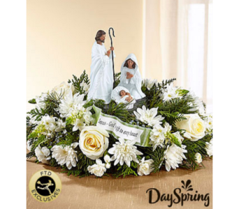 Day Spring God's Gift of Love in Flower Mound TX, Dalton Flowers, LLC