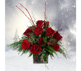 A Berry Merry Christmas in Indianapolis IN, George Thomas Florist