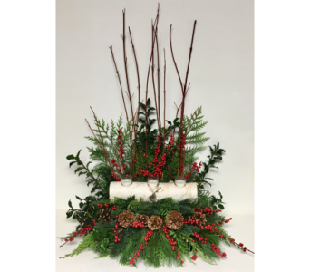 Red Dogwood and Birch Winter Arrangement-One-Sided in Wyoming MI, Wyoming Stuyvesant Floral