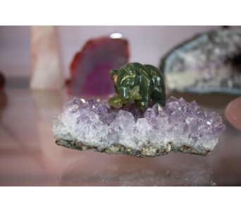 Jade Bear on Amethyst in Medicine Hat AB, Crescent Heights Florist