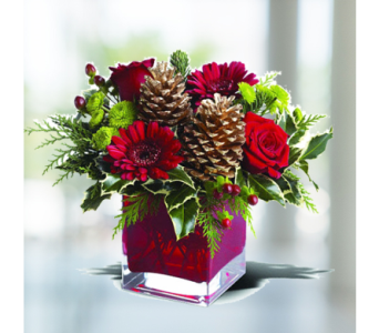 Cozy Christmas in Indianapolis IN, George Thomas Florist