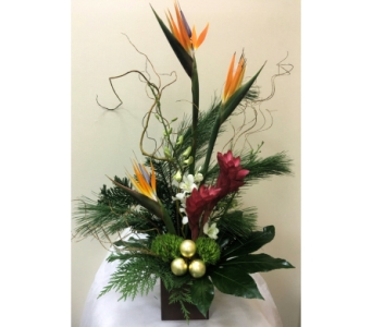 Christmas in Paradise in Naples FL, Gene's 5th Ave Florist