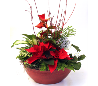 Christmas Elegance in Grimsby ON, Cole's Florist Inc.