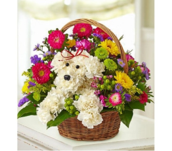 a-DOG-able� in a Basket in El Paso TX, Executive Flowers