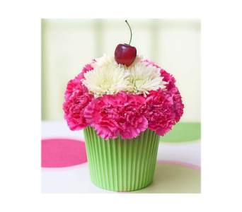Blooming Cupcake in Columbia TN, Douglas White Florist