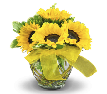 Bowl of Sunshine in Las Vegas NV, Flowers By Michelle