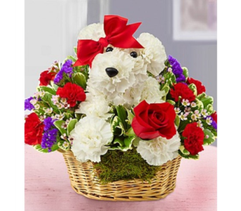 Love Pup in El Paso TX, Executive Flowers